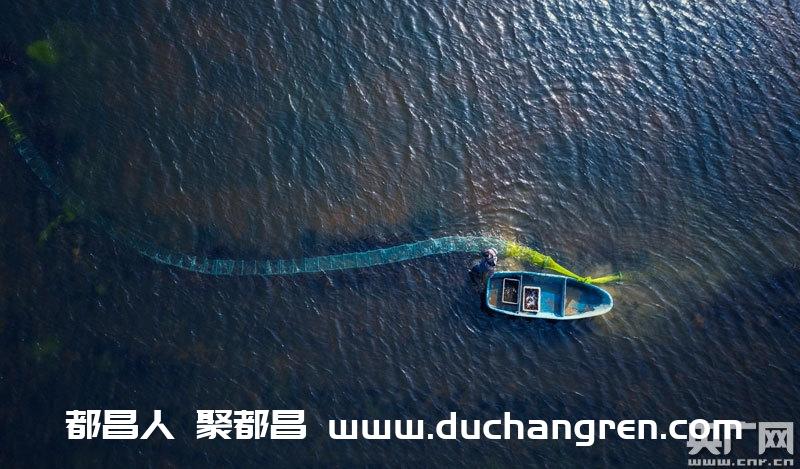 3月13日,江西省九江市都昌县大沙镇虾农在起获小龙虾