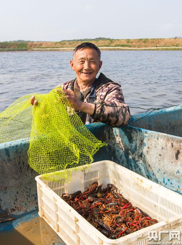 虾农在起获小龙虾